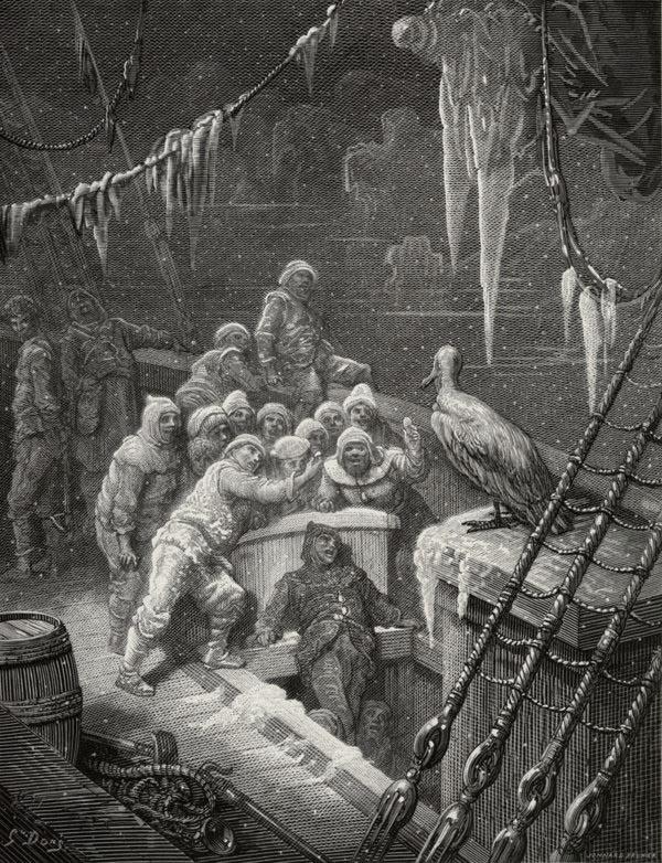 The albatross. Gustave Dore art print