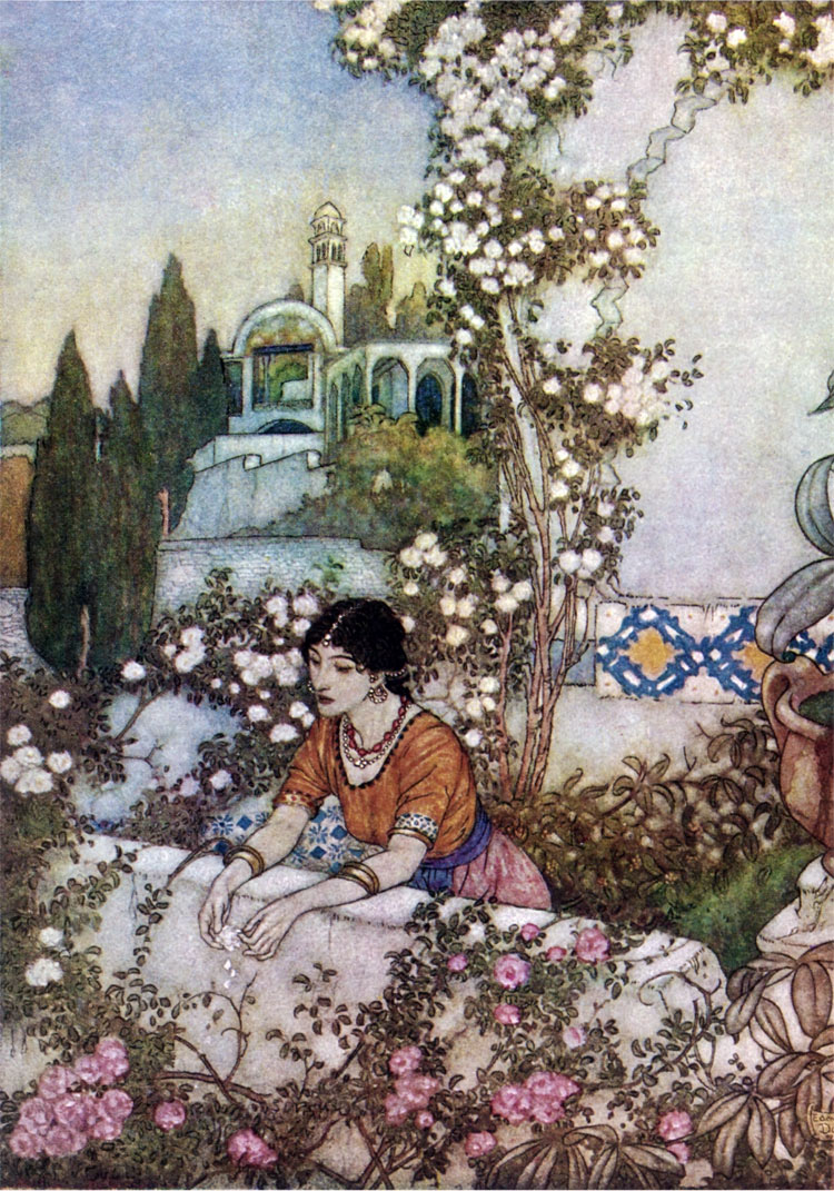 The Blowing Rose, by Edmund Dulac illustration to The Rubaiyat