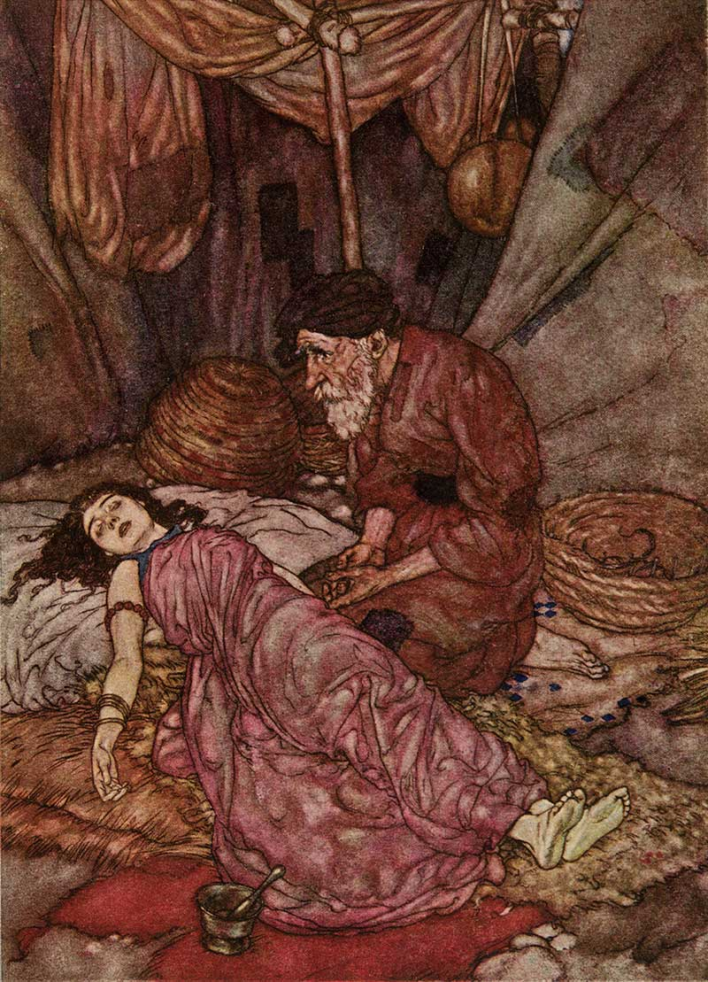The Face of Wretched Man, by Edmund Dulac illustration to The Rubaiyat