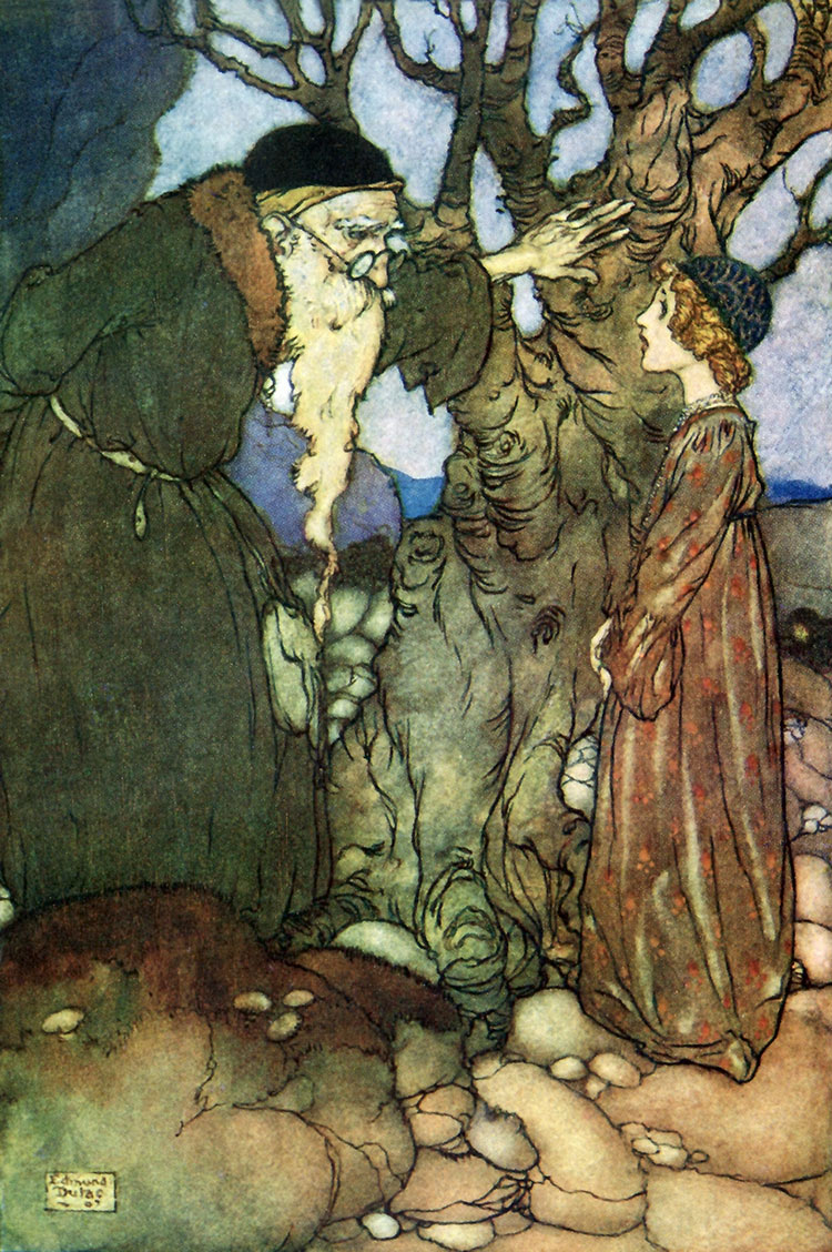 The Bird of Shadow and the Sunbird  Fairies I have met  Edmund Dulac illustration