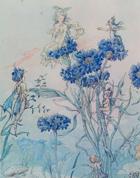 Cornflower Fairy by Harold Gaze art print