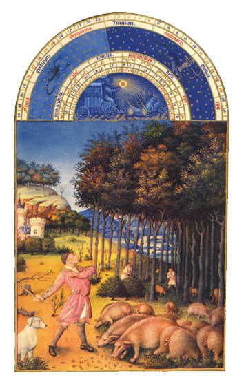 Gathering the Acorns.  Labors of the Months from the Book of Hours of the Duc de Berry, November