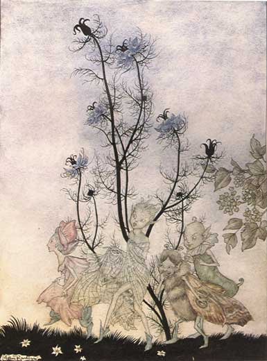 Three Fairies. Arthur Rackham, A Midsummer Night's Dream
