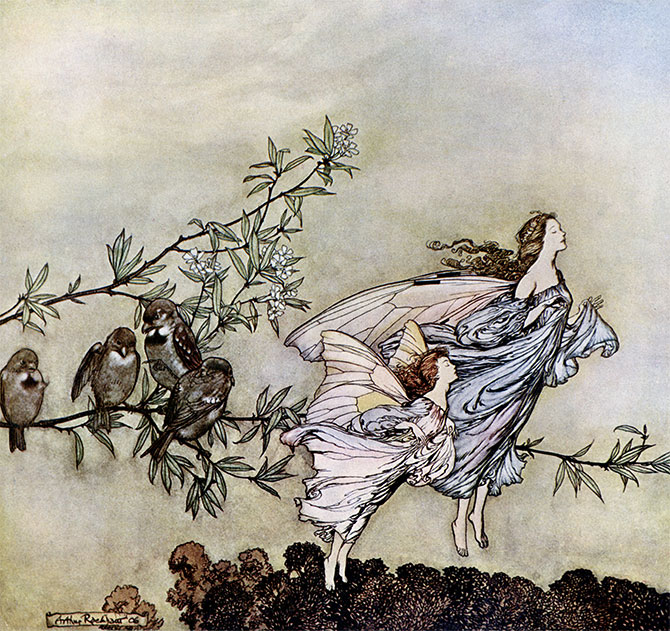 The Fairies had their Tiffs with the Birds, Arthur Rackham, Peter Pan in Kensington Gardens