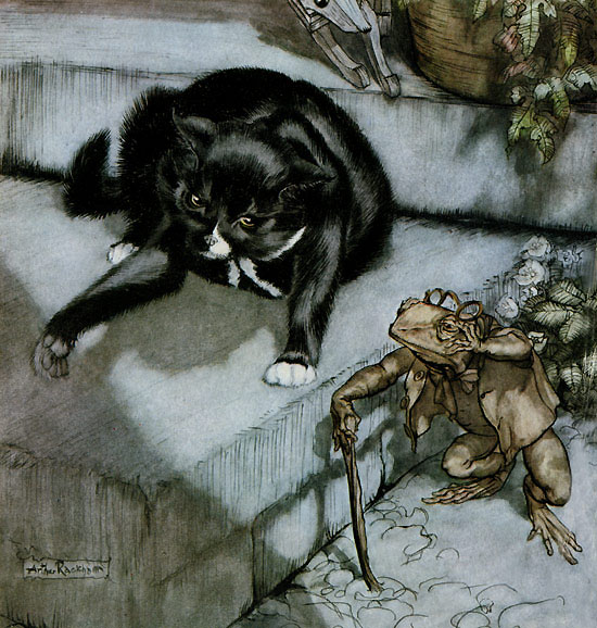 Frontispiece showing Murrum the cat, from Arthur Rackham's illustration to Poor Cecco