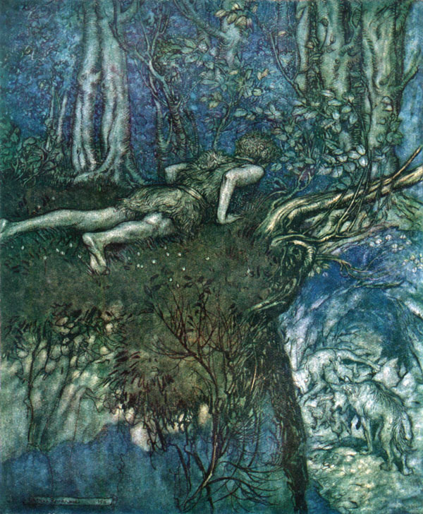 And there I learned what love was like, Arthur Rackham, illustration to Wagner's The Ring of the Nibelung